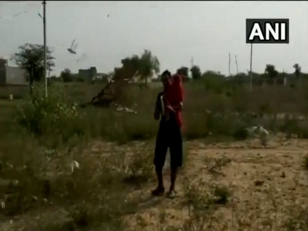 Locals clang utensils to scare away locusts in Nagaur, Rajasthan