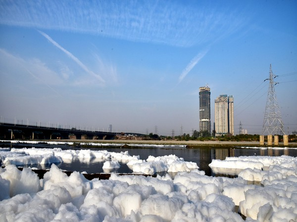 Foam in water near the bank of Yamuna river in Delhi's kalindi kunj area (File photo)