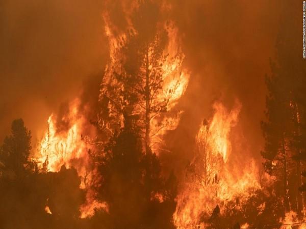 Tamarack Fire in the Californian city of Markleeville (Image Credits: CNN)