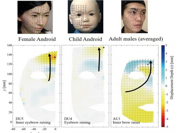 Ishihara, Iwanaga, and Asada, Comparison between the Facial Flow Lines of Androids and Humans, (Image credit: Frontiers in Robotics and AI, 2021)