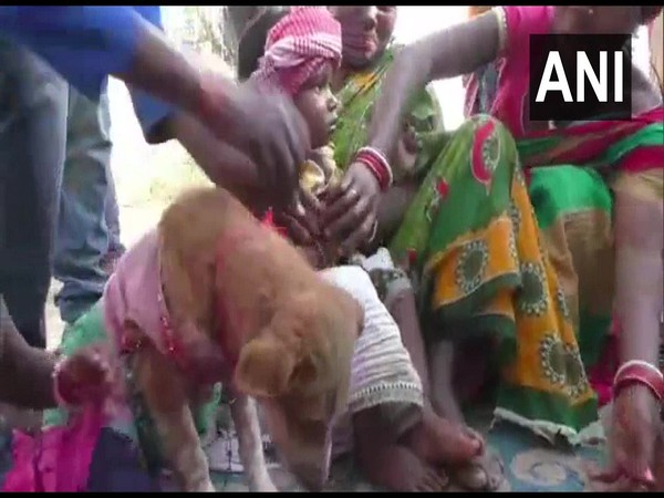 Visual of two children being married off to a dog (Photo/ANI)