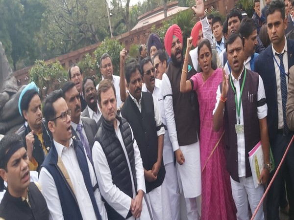 """During the protest, Congress MPs raised slogans -- """"Give Justice, Give Justice to Delhi"""". Photo/ANI"""