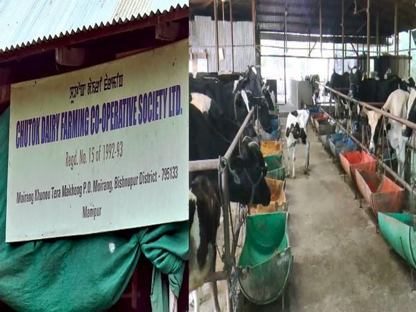 Chutok Dairy Co-operative Farming Society