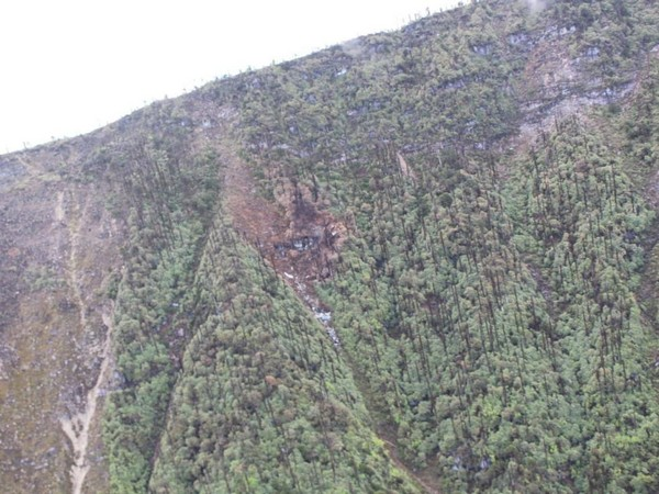 The AN-32 plane crash site in Arunachal Pradesh. (File photo)