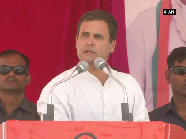 Congress president Rahul Gandhi addressing a rally in Dholpur, Rajasthan on Monday. Photo/ANI