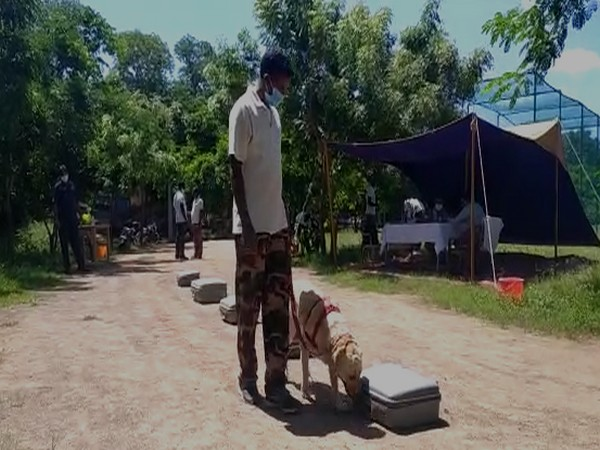 Andhra Pradesh Intellegence Department inspected police dog's performances in Krishna District.