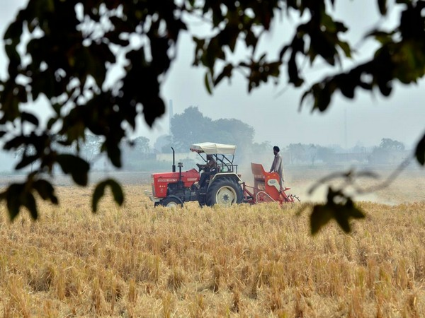 Kharif output this time could decline by 3 to 5 per cent due to lower sowing acreage
