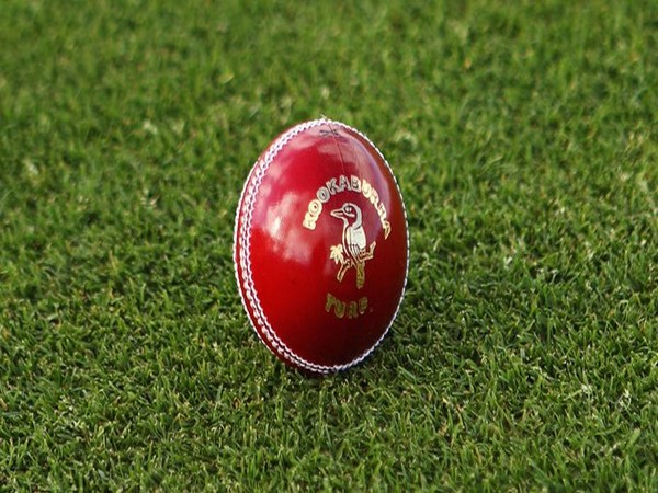 Kookaburra red Turf ball (Photo/Cricket Australia Twitter)