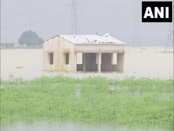 Visuals from Bihar flood. (Photo/ANI)