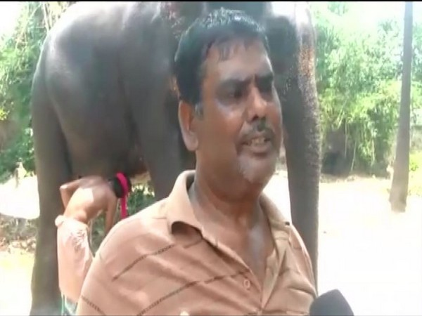 Akhtar Imam has willed property worth Rs 5 crore to two elephants. Photo/ANI