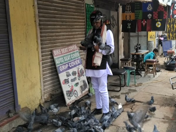 A visual of traffic cop Suraj Kumar Raj feeding pigeons in Baripada, Odisha on Saturday. Photo/ANI