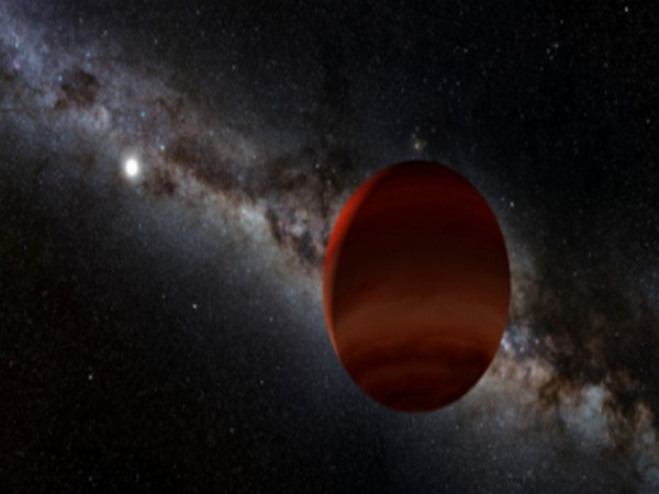 Artist's impression of white dwarf plus cold brown dwarf pair (Image credits: NOIRLab/NSF/AURA/P. Marenfeld; Acknowledgement: William Pendrill)