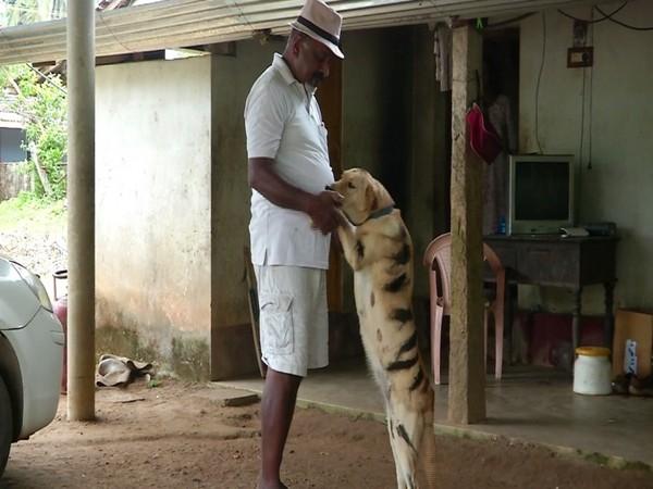 The farmer Srikanth Gowda with his dog -- Bulbul. Photo/ANI