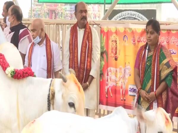 Go Puja being performed in Kanakdurga Temple