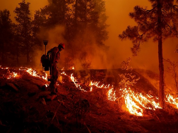 Northern California wildfires (Photo Credit - Reuters)