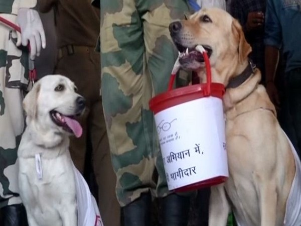 BSF dog squad took part in the cleanliness campaign in Jammu. Photo/ANI