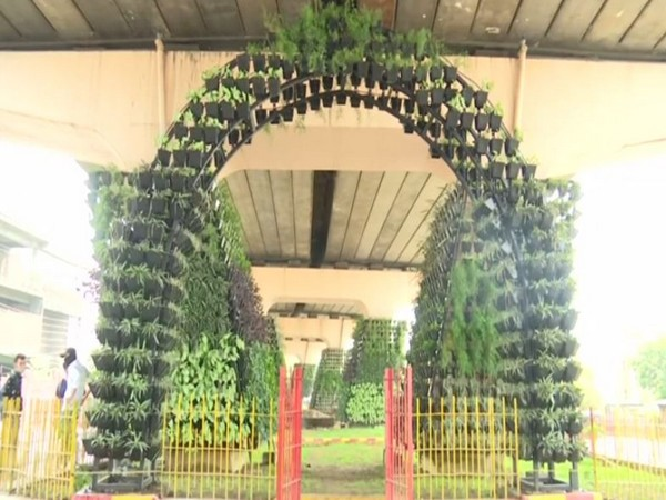 Visual from Jammu Vertical Garden (Photo/ANI)