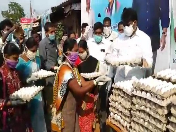 YSR Congress Party MLA distributing 2 tonnes of chicken and 15,000 eggs in Erpedu village, AP. Photo/ ANI