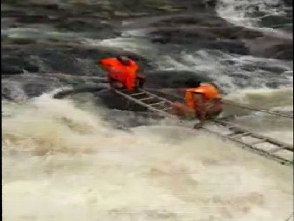 Kolar Municipal Corporation carrying out the rescue operation in Bhopal on Tuesday (Photo/ANI)