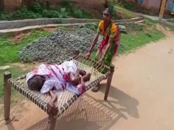 Elderly daughter carried 120-year-old mother on cot to bank for pension money in Odisha's Nuapada district (Photo/ANI)