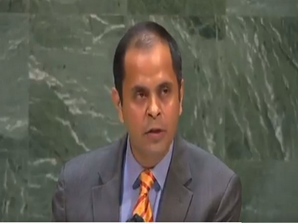 Pratik Mathur, Counsellor in India's Permanent Mission to the UN.