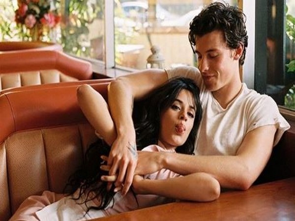 Camila Cabello and Shawn Mendes (Image courtesy: Instagram)
