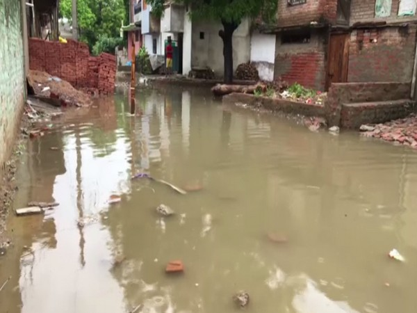 Streets waterlogged due to heavy downpour in Sauda Nagar, Kanpur (Photo/ANI)