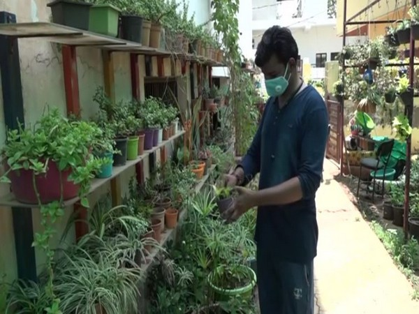 Visual from a nursery in Agra (Photo/ANI)