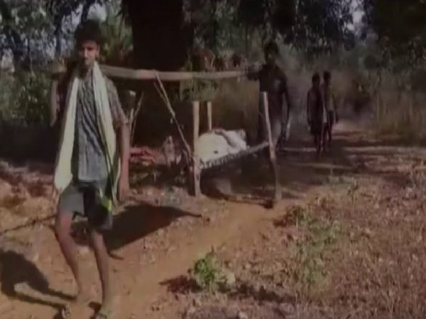 Medical staff carries tribal patients on cot for kilometres on foot in case of an emergency situation (Photo/ANI)