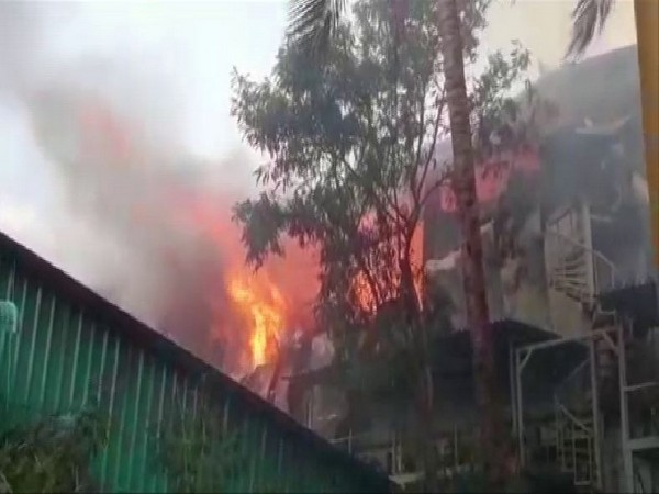The Spice factory caught fire at about 8 am on Monday. Photo/ANI