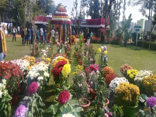 Variety of plants and flowers in the State Level Annual Flower Show, 2020 (Photo/ANI)