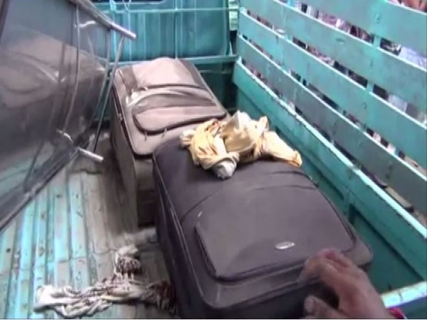 The suitcases in which the couple's bodies were stuffed after the murder. [Photo/ANI]