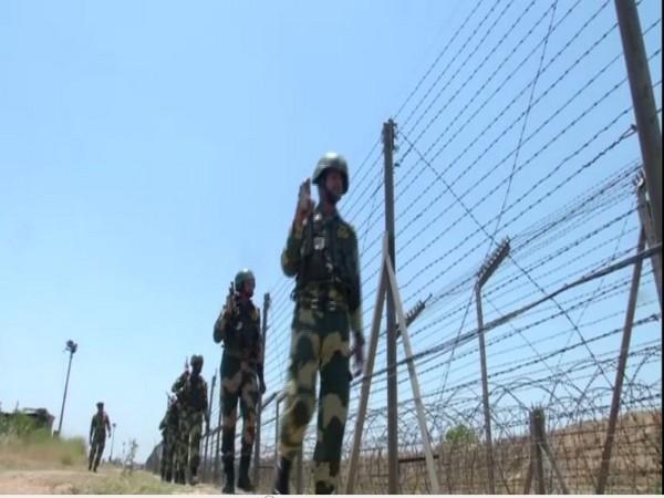 BSF personnel patrolling near the International Border in Jammu [Photo/ANI]