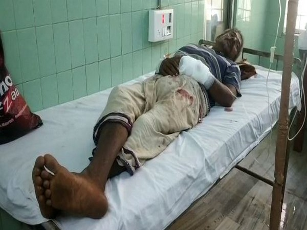 A 65-year-old man Madla Tumbaiah got injured in a bear attack on Sunday, in Limbugan village, Andhra Pradesh . (Photo/ANI)