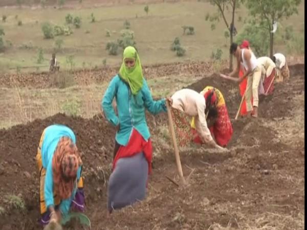 Returning migrant labourers engage in work under MGNREGA in Karnataka. Photo/ANI