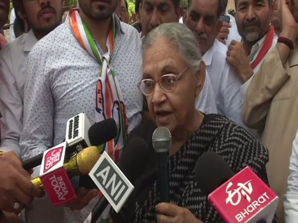 Sheila Dikshit along with other party members held protest in Delhi