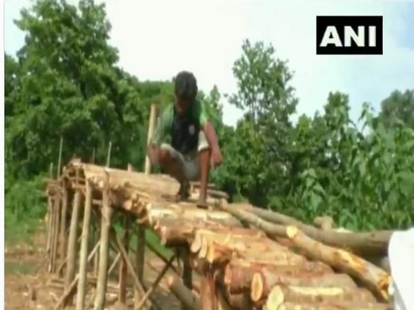 A villager construction a bridge over nullah (Photo/ANI)