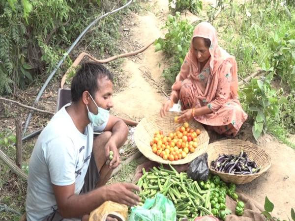 Visual of Vijay Kumar Verma, a farmer from panchayat Chatrari sorting his produce (Photo/ANI)