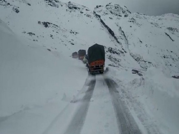 Vehicles are stranded due to snowfall in Kullu area of Himachal Pradesh. Photo/ANI