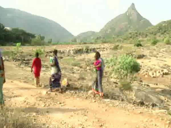 The elephant corridor where the land has been allotted to the families. Photo/ANI