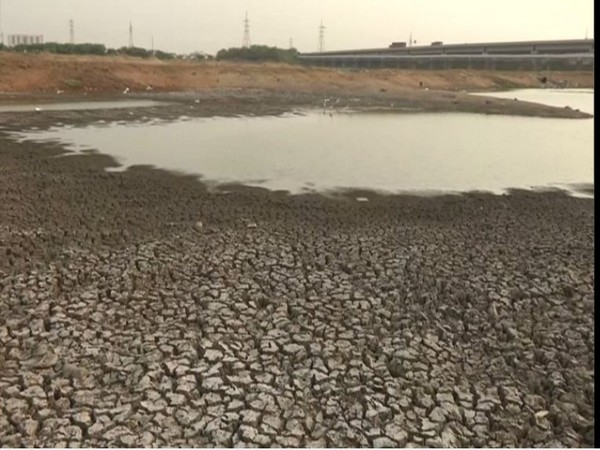 The dried-up bed of Porur lake in Chennai (Photo/ANI)