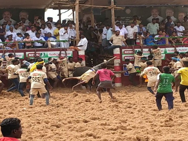 Owner of a bull died and 15 others were injured during Jallikattu event in Coimbatore.