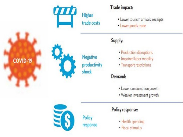 Policy interventions can play to help mitigate damage to economies.