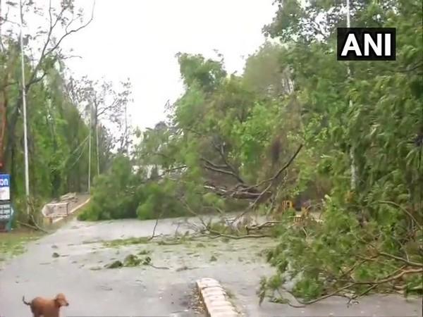 Cyclone Fani lashes Odisha