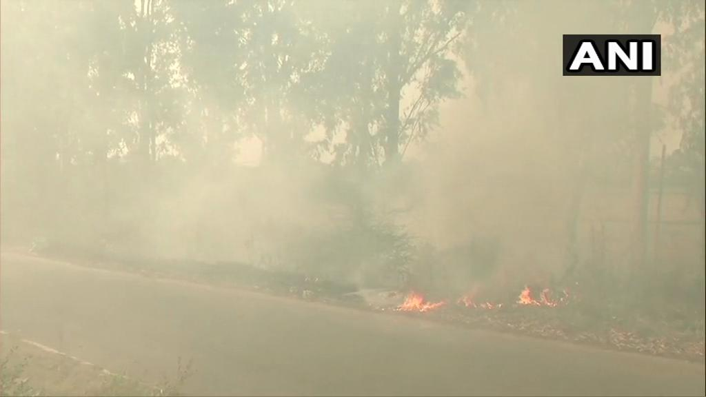 Fire along the National Highway 5 near Shambhu barrier village in Rajpura. Photo/ANI