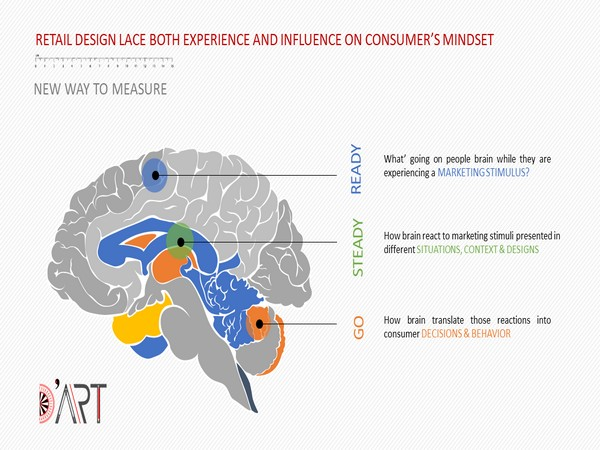 The Cerebral Measure of Experience