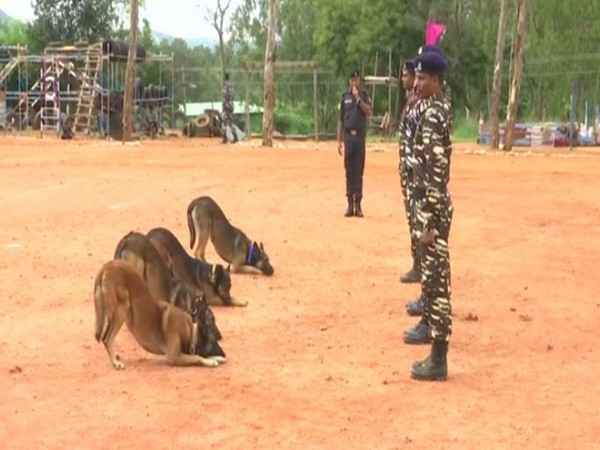 Dogs undergoing training at CRPF's Dog Breeding and Training School in Bengaluru. Photo/ANI