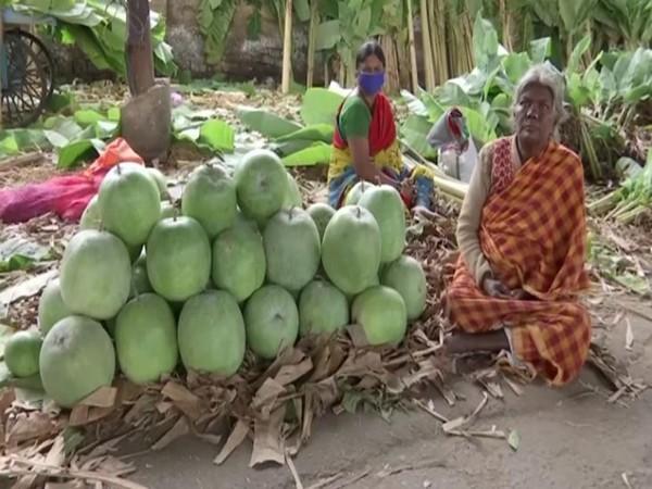 Vendor at a market in Bengaluru (Photo/ANI)