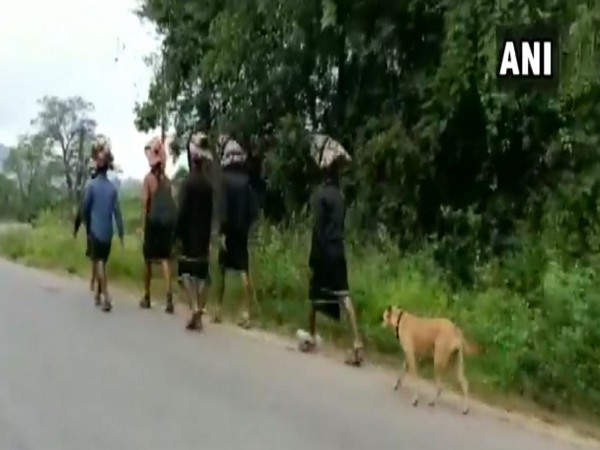 The stray dog walking along with the Sabarimala pilgrims in Karnataka.