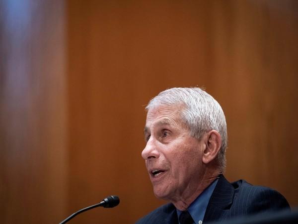 US top coronavirus adviser Dr Anthony Fauci